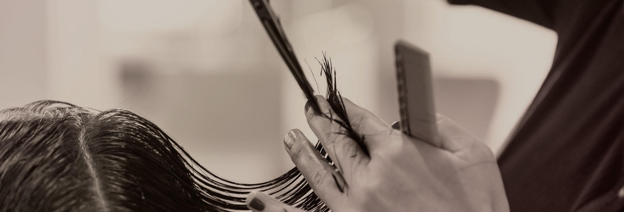 Hair stylist cutting hair